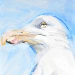 Seagull, blue sky   acrylic on canvaspaper   50x70 cm   Loris,Teguise Lanzarote ES