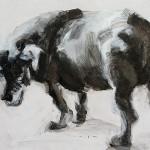 Stray Dog   Acrylic on wooden panel   70x50 cm