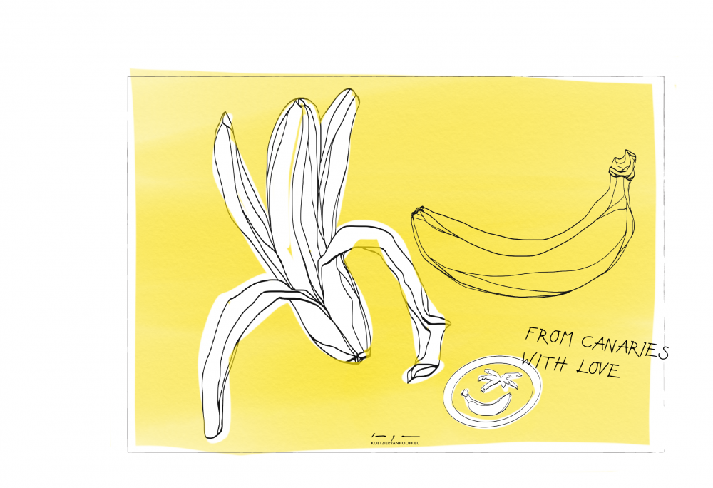 From Canaries with Banana Love   digital drawing