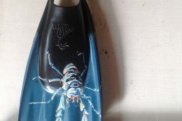 Crab on Vin