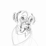 Boxer Dog   Digital drawing