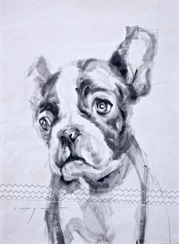 Gallery Culture of Yinbao Guangzhou Gallery China | French bulldog puppy |Acrylic on sailcloth | 50x70 cm