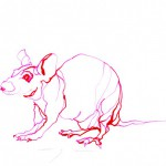 Red Mouse 2   Ink drawing on paper   A3