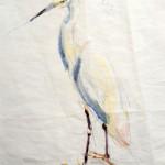 Cattle Egret / White Egret   Acrylic paint on sail   50x70 cm