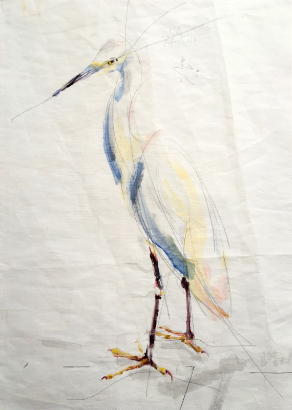 Cattle Egret / White Egret | Acrylic paint on sail | 50x70 cm