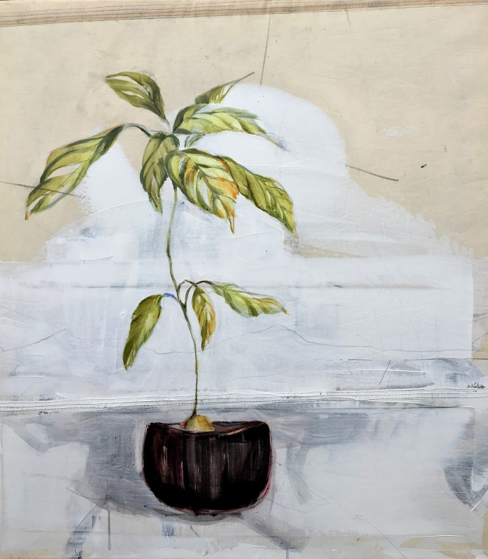 Kunstuitleen Alkmaar | Avodaco plant in black pot | acrylic on sailcloth | 80x90 cm