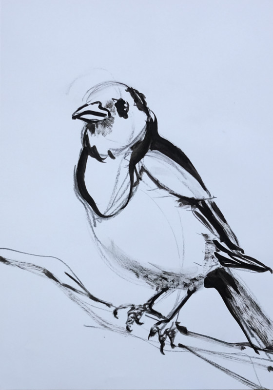 Sketch / study painting for Wallpaper Birds | acrylic on A3 paper - 02
