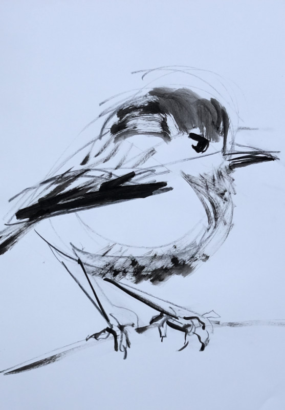 Sketch / study painting for Wallpaper Birds | acrylic on A3 paper - 06