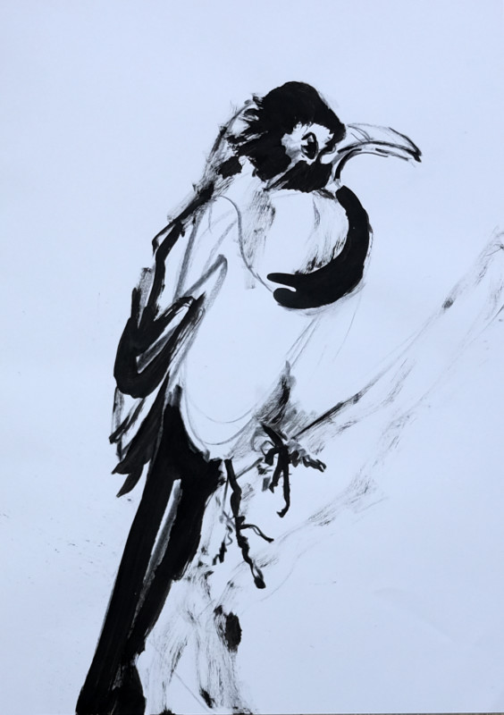 Sketch / study painting for Wallpaper Birds | acrylic on A3 paper - 03