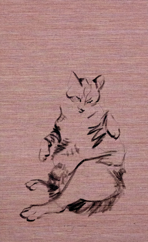 Cat lying on rose-taupe wallpaper | 26x36 cm