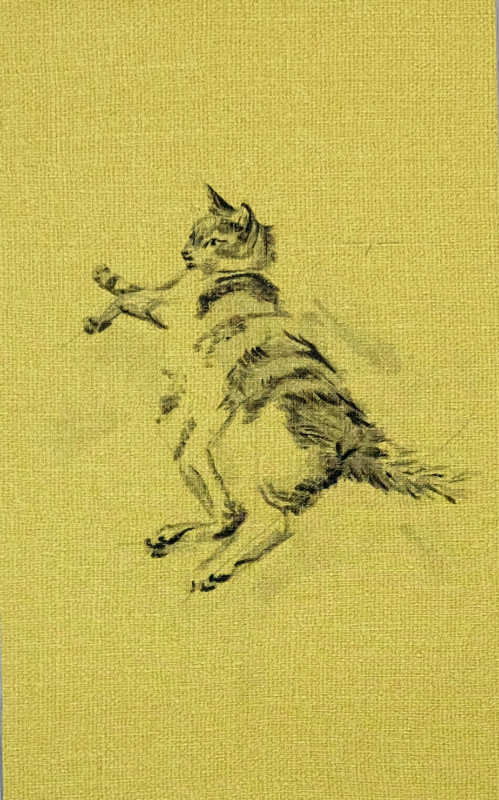 Cat lying on yellow wallpaper | 26x36 cm