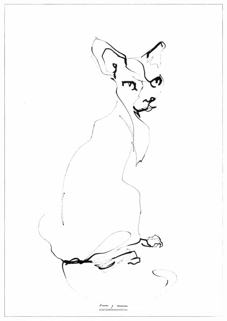 Cat Looking Back | Koetzier van Hooff | Artwork