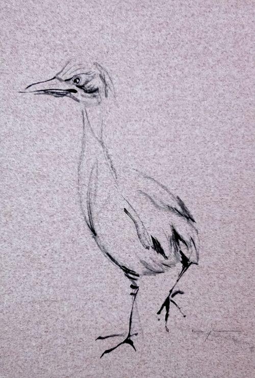 Koetzier van Hooff | Wallpaper Series | Bird