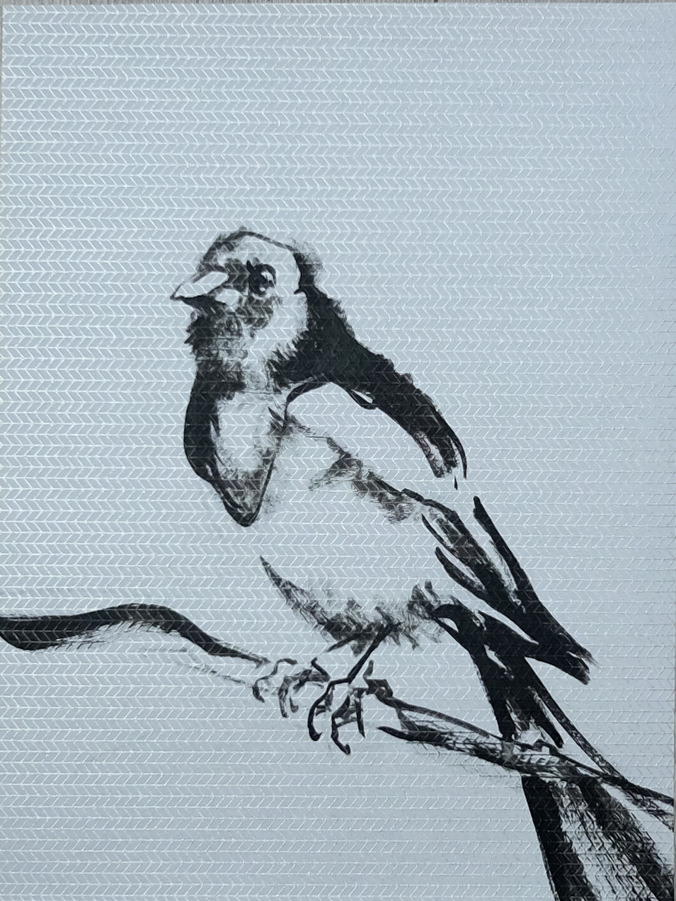Koetzier van Hooff   Wallpaper Series   Bird