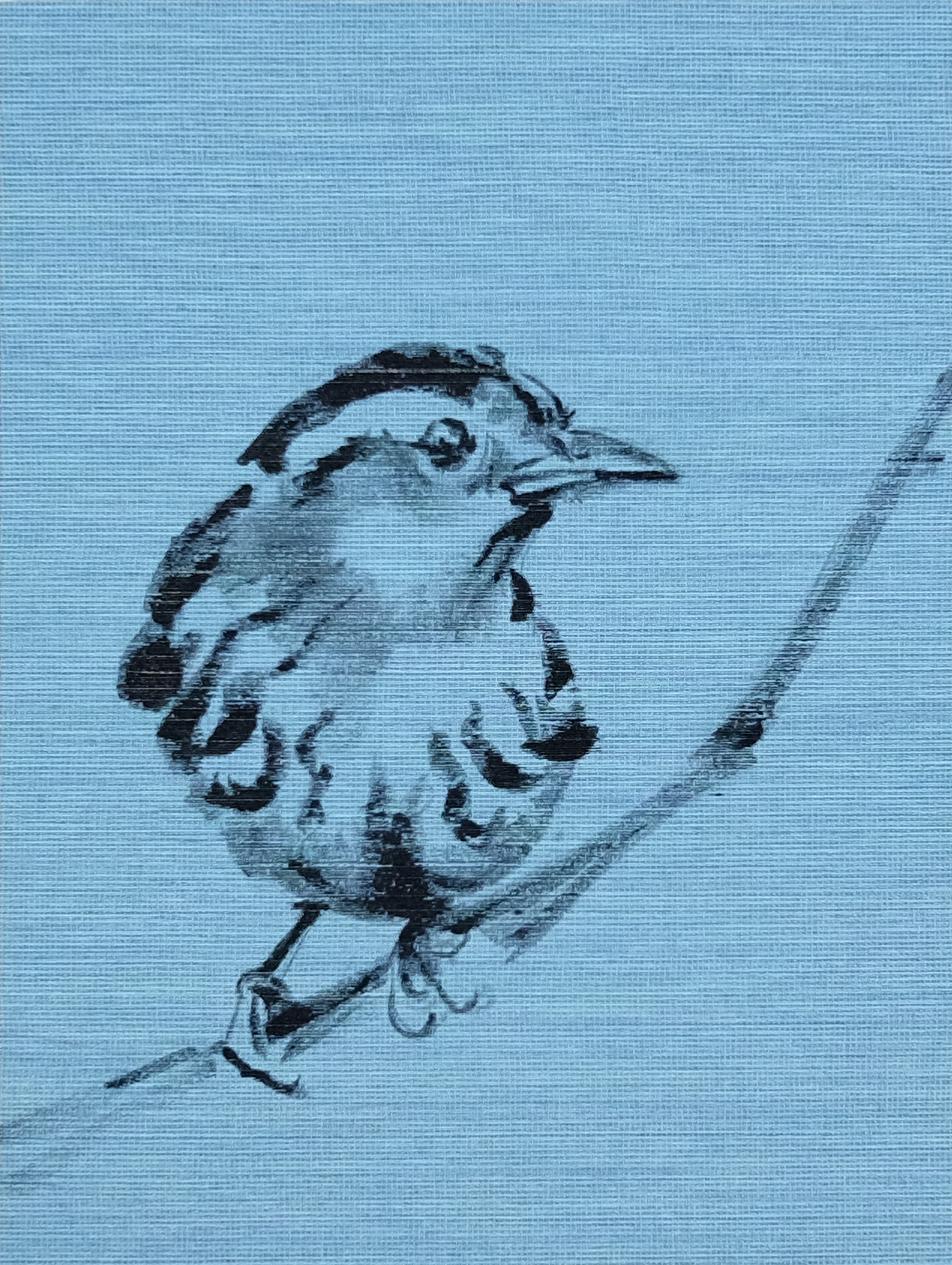 Koetzier van Hooff   Wallpaper Series   Bird on Blue