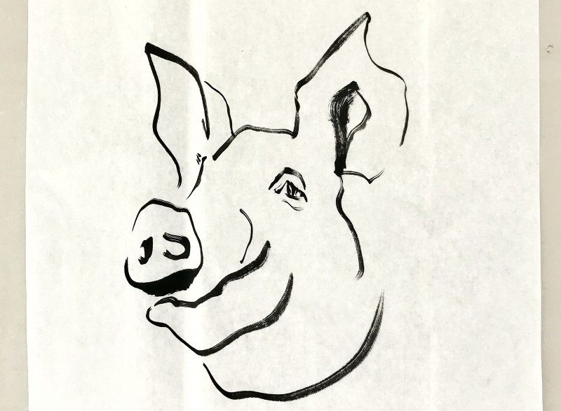 2019 Year of the Pig | ink on paper