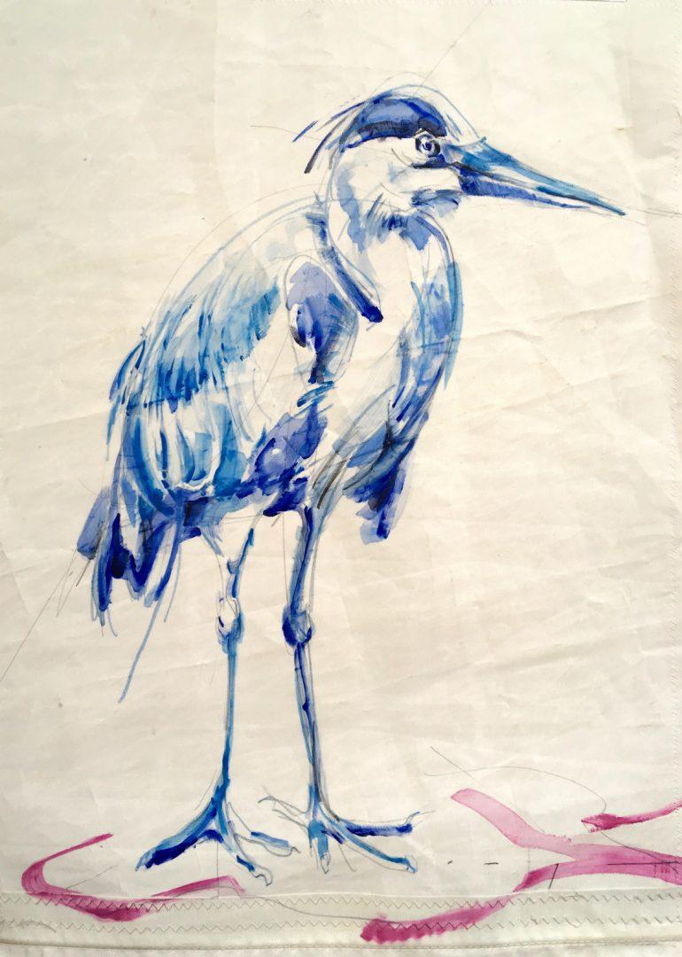 Blue Heron on Sail