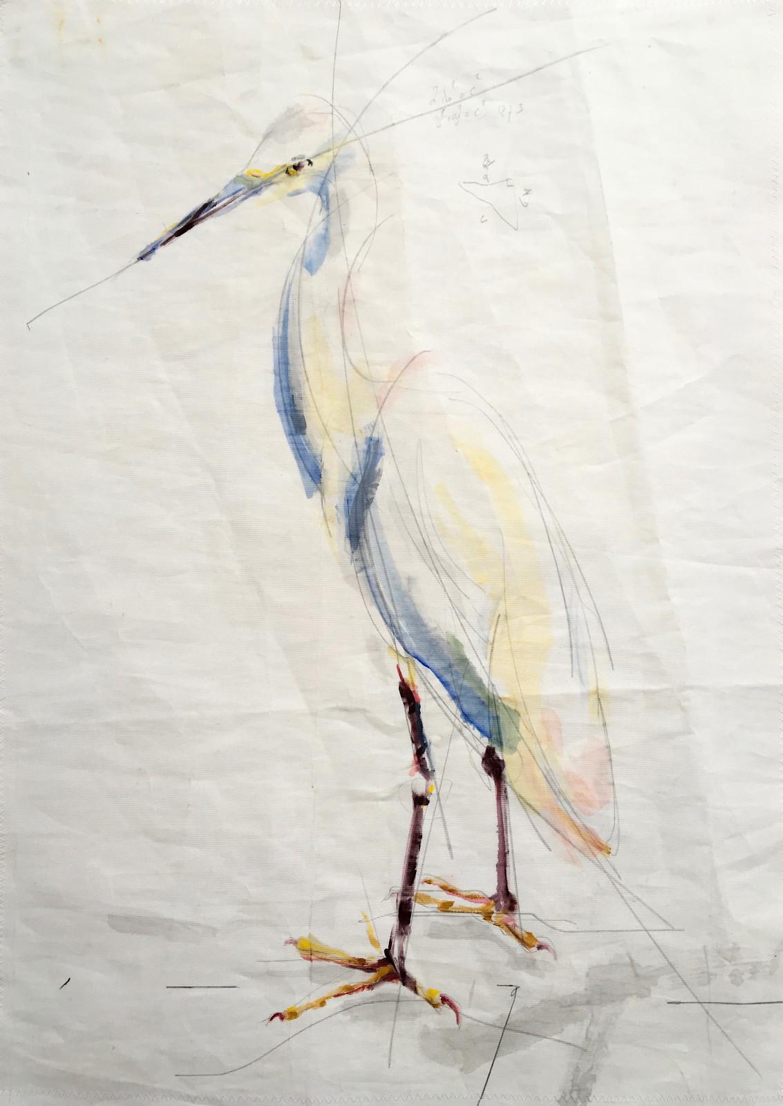 White Egret on Sail