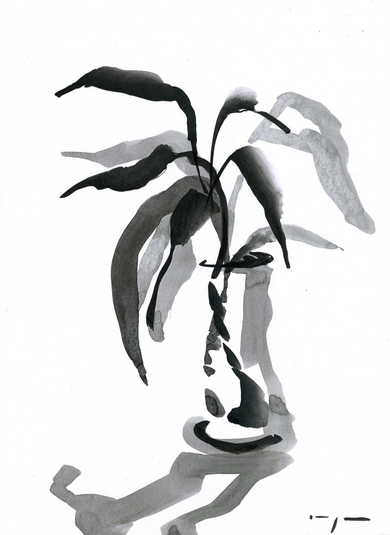 Lucky Bamboo 2 | Ink on Paper