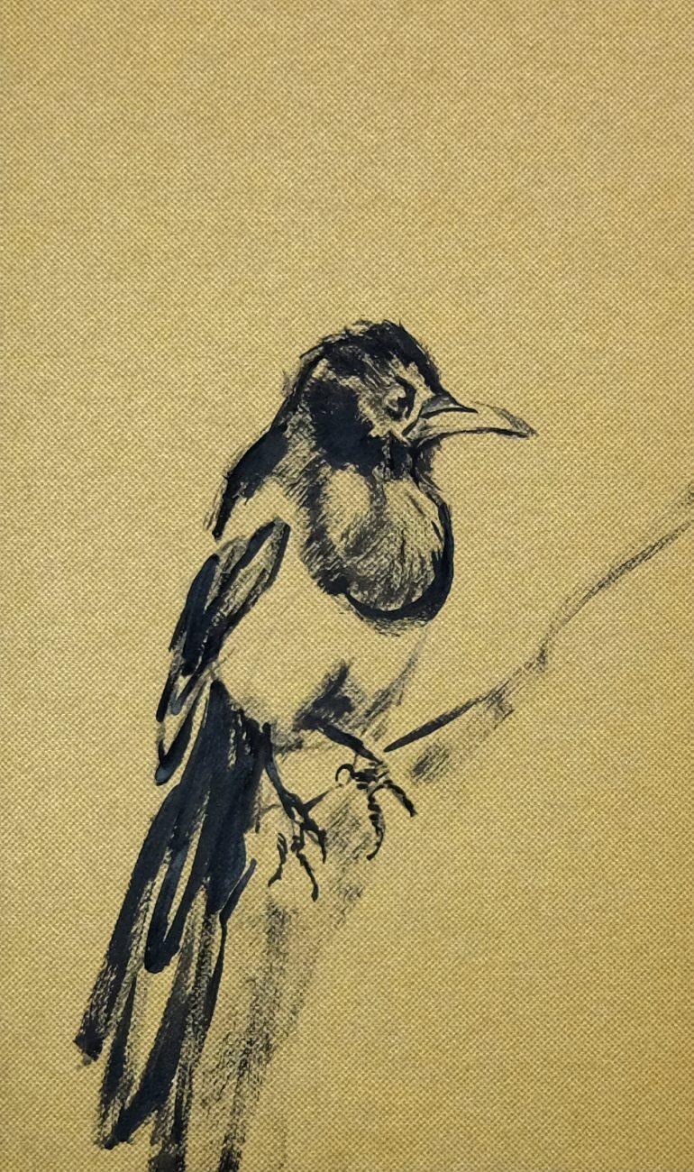 Bird | Wallpaper Series
